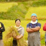 【防災】都市農業の新たな役割、「防災協力農地」とは?(政策アイディア)